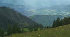 Streaks of sunlight over wildflowers Hells Canyon from Graves Point Stock Footage