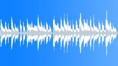 Island Groove - 15 sec Arkistomusiikki