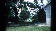 1962: i saw a house a lady in the back yard .some nice tree CHICAGOLAND AREA Stock Footage