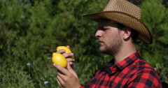Exotic Fruit Cultivator Man Checking Bio Lemon Quality in Countryland Plantation Stock Footage