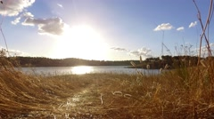 River hydroelectric dam and cork tree field at sunset steady shot 4k Stock Footage