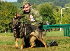 Mukachevo, Ukraine - September 27. 2016: Canine with his dog overcomes obstac Stock Photos