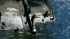Paris, France. Silhouette of people and dogs on a slipway next to the river Sein Stock Footage