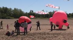 Pokemon GO themed kite flying festival on Toronto beaches Stock Footage