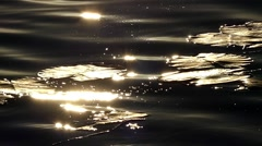 Slow Motion. the Leaves of a Lily Swaying on the Waves in the Glare of the Stock Footage