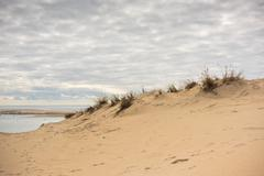 View of The Arcachon Bay and The Duna of Pyla, France Stock Photos
