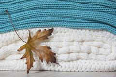 Maple leaf with knitted woolen sweaters Stock Photos
