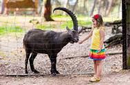 Little girl feeding wild goat at the zoo Stock Photos