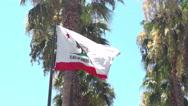 Flag of California Stock Footage