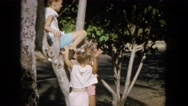 1964: young girls climbing in a small tree with traffic in the background HAWAII Stock Footage