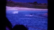 1964: tourists watching dolphins jumping and playing in the ocean HAWAII Stock Footage