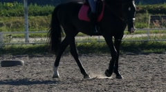 Legs of Riding Horse in Slow Motion. Stock Footage