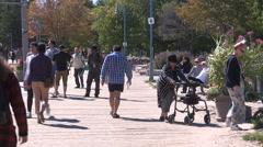 Toronto eastern beaches boardwalk Stock Footage