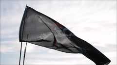 Jolly roger flag Stock Footage