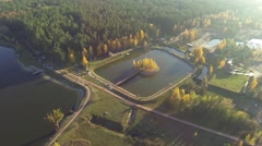 Aerial view of an autumn lake in forest with a bird's eye view Stock Footage