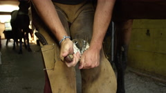 CLOSE UP: Experienced farrier cleaning off the exfoliating sole of horse hoof Stock Footage