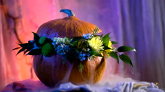 Halloween, filled with holiday traditions, symbols and details. Flower Stock Footage
