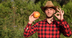 Young Rancher Man Holding Grapefruit and Showing OK Sign in Bio Garden Portrait Stock Footage