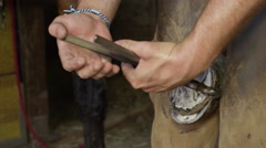 CLOSE UP: Skillful farrier removing excess length of horse hoof with nippers Stock Footage
