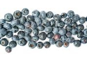 Bilberry or blueberry over isolated white background Stock Photos