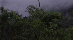Ecuador driving through foggy mountains Stock Footage