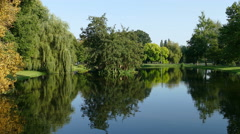 Pond in Kampen on sunny day Stock Footage