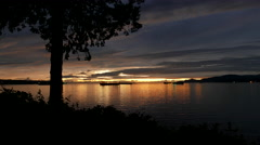 Night scene at Stanley Park in Vancouver BC Canada. Stock Footage