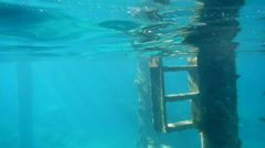 POV of lagoon underwater below Overwater bungalows at the Sofitel Hotel, Moorea, Stock Footage