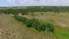 Prairie. aerial shot Stock Footage