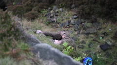 A young man rock climbing bouldering. Stock Footage