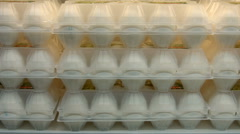 Packing of chicken eggs Stock Footage