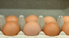 A lot of brown chicken eggs Stock Footage