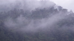 Tilt from misty mountains to river in Ecuador Stock Footage