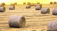 Straw bales in the sunset Stock Footage