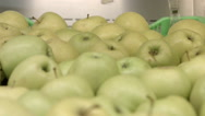A lot of yellow-green apples Stock Footage