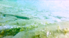 Underwater shots of a Man with his surfboard in the blue ocean Stock Footage