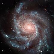 Pinwheel Galaxy. Spiral galaxy in the constellation Ursa Major. Stock Photos