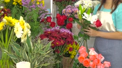 Florist woman selecting beautiful flowers for a beautiful bouquet Stock Footage