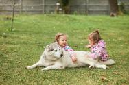 The two little baby girls playing with dog against green grass Stock Photos