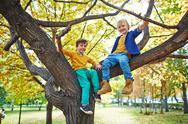 Boys on branch Stock Photos