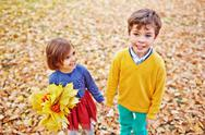Friendly youngsters walking in park in autumn Stock Photos