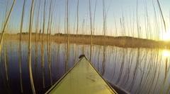 Kayaking throug dense reed vegetation at a Nordic lake in a summer evening Stock Footage
