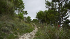 A man walking with his mountain bike in a European mountain range. Stock Footage