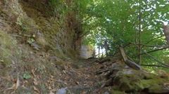 Walking in Forest Mountain Pov steady shot gimbal 4K Stock Footage