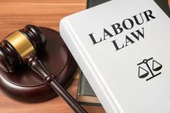 Labour law book and gavel. Consumer protection book and gavel. Law and regula Stock Photos