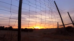 Field fence in alentejo at sunset portugal steady shot 4k Stock Footage