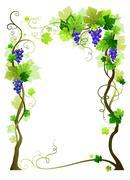 Blue vineyard frame Stock Illustration