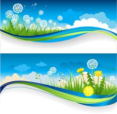 Dandelion banner Stock Illustration
