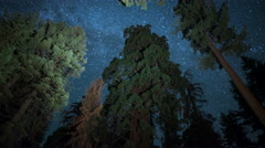 Sequoia Milky Way 05 Grant Grove Kings Canyon 6K Stock Footage