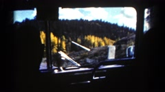 1967: vehicle moving through land of yellow flowers and dense forest COLORADO Stock Footage